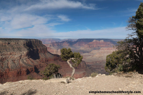 Best Vacations For Kids Under 10 - Grand Canyon